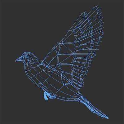 animated-doves-3d-model-animated-rigged-max-obj-3ds-fbx-c4d-lwo-lw-lws.jpg (400×400)