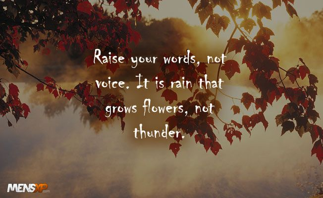 Raise your words not your voice it is #rain that grows flowers not thunder. #Quote