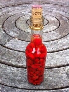 Rosehip Vinegar. What's not to love. And so healthy too