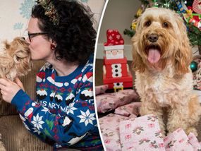 BRITAIN'S most pampered pet is celebrating Christmas in the lap of luxury with 68 individually wrapped presents costing in excess of £1,000.