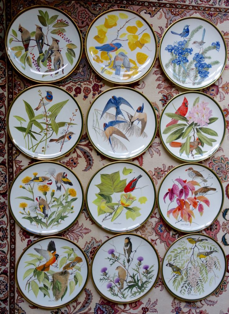 Full Set of 12 Wedgwood Fine Bone China Dinner size Franklin Mint Porcelain Songbirds of the World Plates by Frenchtoast4u on Etsy