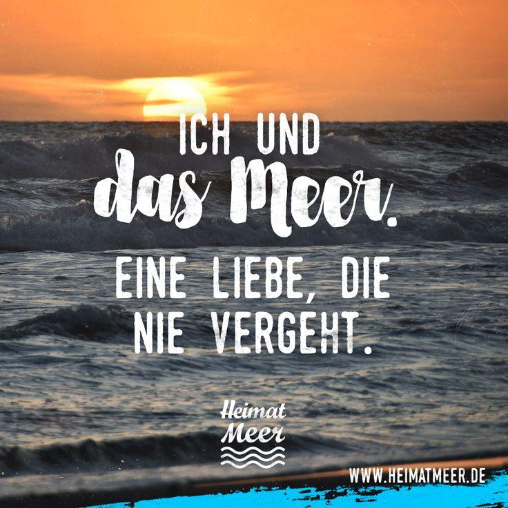 Ich & das Meer. Eine Liebe, die nie vergeht. Mee(h)r >>