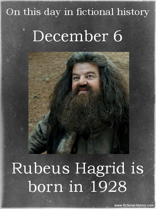 (Source) Name: Rubeus Hagrid Birthdate: December 6, 1928 Sun Sign: Sagittarius, the Archer Animal Sign: Earth Dragon