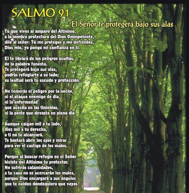 Salmo 91 Conoce El Mayor Salmo De La Biblia En 2020 Salmo 91 Salmos Salmo 91 Cristiano