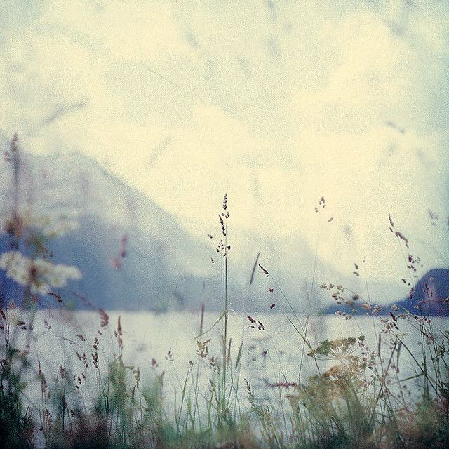 """""""If you will stay close to nature, to its simplicity, to the small things hardly noticeable, those things can unexpectedly become great and immeasurable."""" ~ Rainer Maria Rilke"""