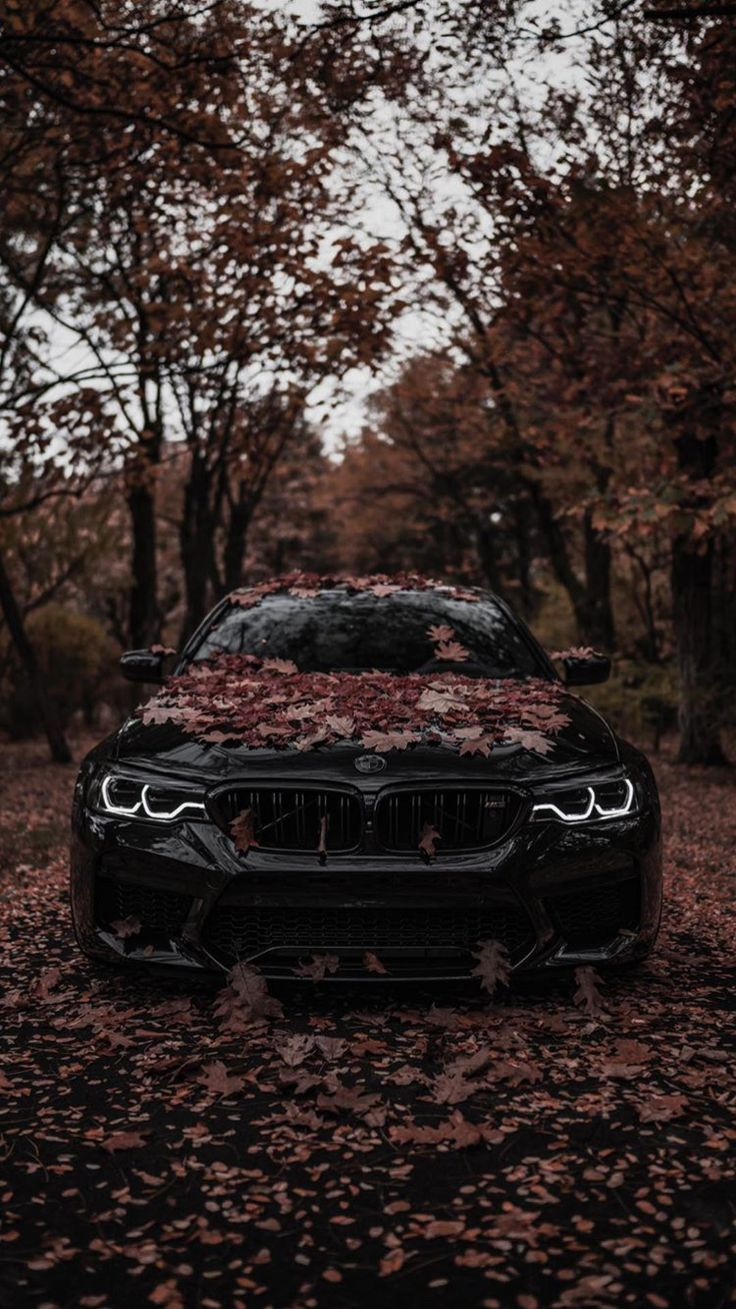 Nice Cool cars 2019 Cool cars above are luxury automobiles that are expensive. H…