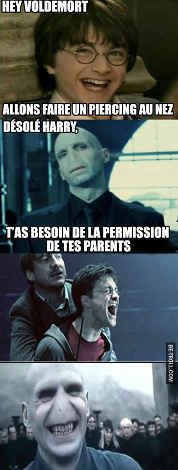 Voldemort 1 - Harry Potter 0