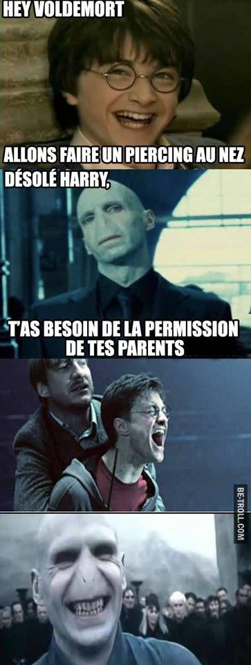 Voldemort 1 - Harry Potter 0