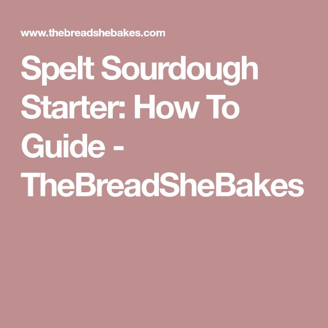 Spelt Sourdough Starter: How To Guide - TheBreadSheBakes