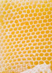 Como fazer papel favo de mel