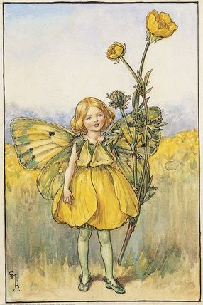 Illustration for the Buttercup Fairy from Flower Fairies of the Summer. A girl dressed as a fairy in a yellow outfit stands, a buttercup plant in her left hand. Author / Illustrator Cicely Mary Barker                                                                                                                                                     More…