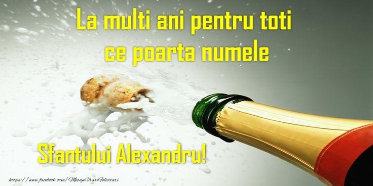 La multi ani pentru toti ce poarta numele Sfantului Alexandru!