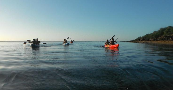 Kayaking in Agnes Water/ 1770, Australia  www.1770liquidadventures.com.au