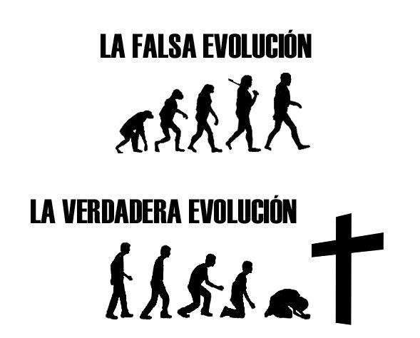 creacion vs evolucion - Buscar con Google