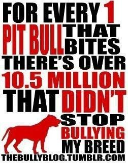 Stop Bullying my Breed. I don't have a pit but I don't