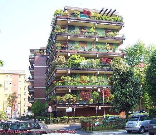 balconi fioriti...