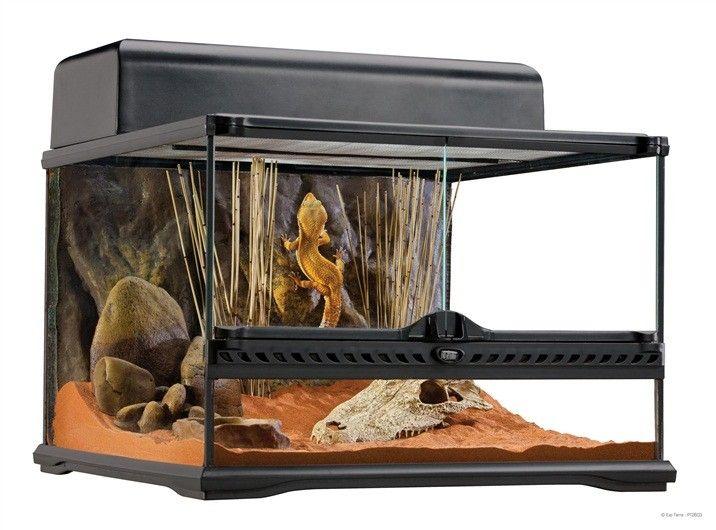 Terrario Cristal Pequeño  EXOTERRA Terrario Cristal Pequeño  EXOTERRA son un hogar ideal para reptiles y anfibios y han sido diseñados por herpetólogos europeos.