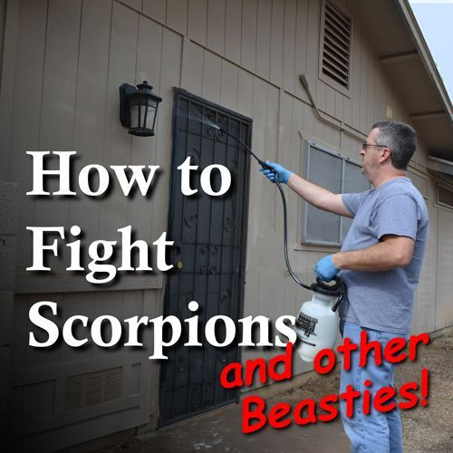 Here in Arizona, we have horrible little, poison-filled monsters, just itching to invade our homes. I'm DIY'ing a defensive barrier with help from my friends at @bugweedmarts   #sp #DIY #scorpions #bugs #buylocal