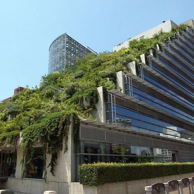 7 Edificios muy verdes | 20Minutos (Listas)