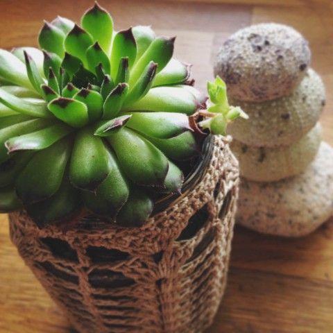 suculenta-frasco-crochet_mybelovedcraft