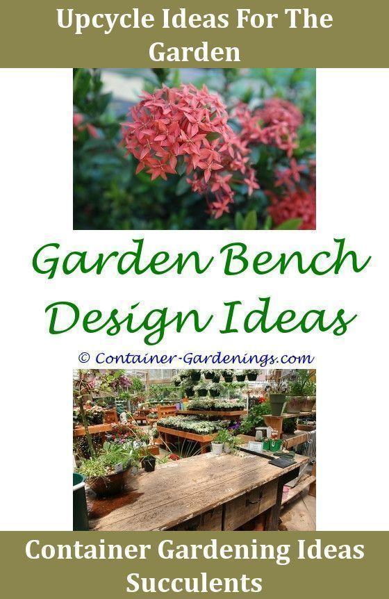 Beautiful Garden Ideas Australia Gargen Landscape Bed Walkway Planting In Uncomplicated Beginner Landscaping