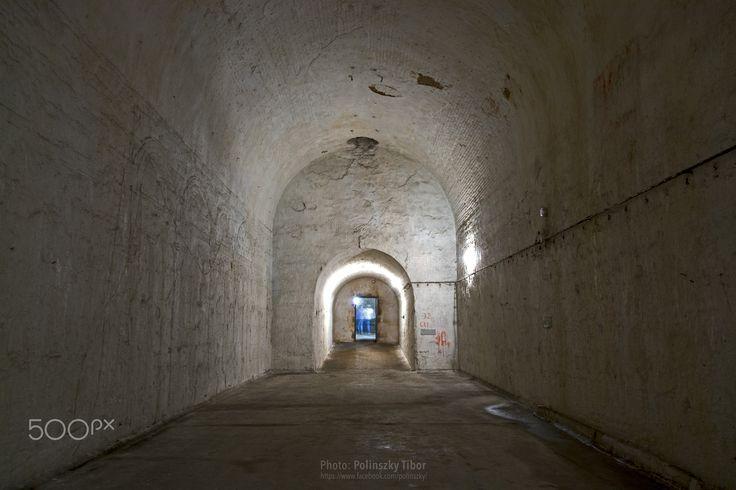 """Shadows at the end of the tunnel - """"Shadows at the end of the tunnel!"""" ... cellar in Kőbánya. ----------- """"Árnyak az alagút végén!"""" ... pincerendszer Kőbányán."""