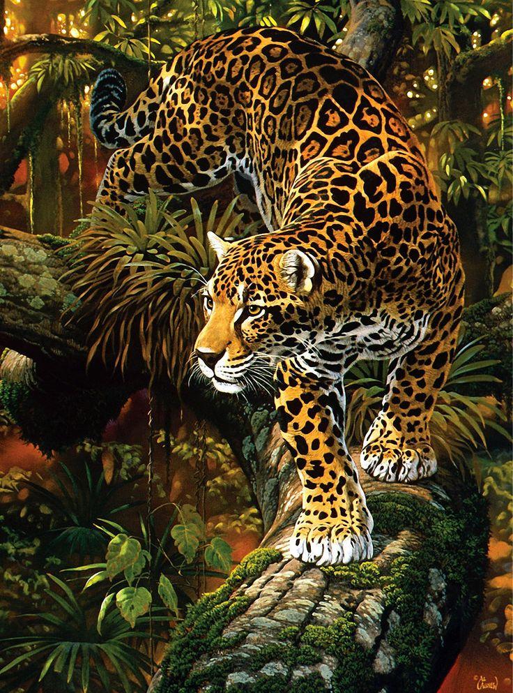 тигр и леопард в лесу картинки пожелал актрисе здоровья