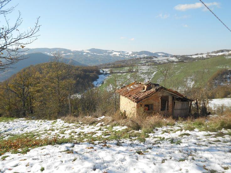 A 6 Km Da Serramazzoni, Fondo Con Ca.6.000mq Di Terreno Privato Oltre 3 Fabbricati In Sasso Completamente Da Ristrutturare