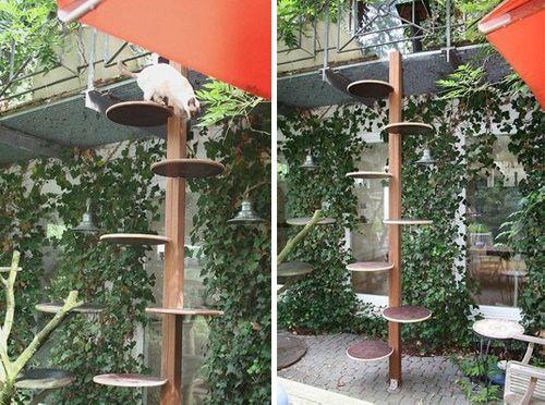 Mejores 148 im genes de cat scratchers trees en - Arbol gato ikea ...