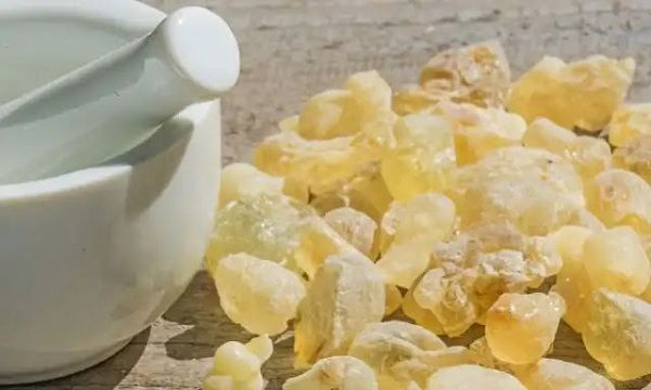 فوائد اللبان الدكر للبشرة ووصفاته الطبيعية Chamomile Essential Oil Essential Oil Diffuser Lavender Essential Oil