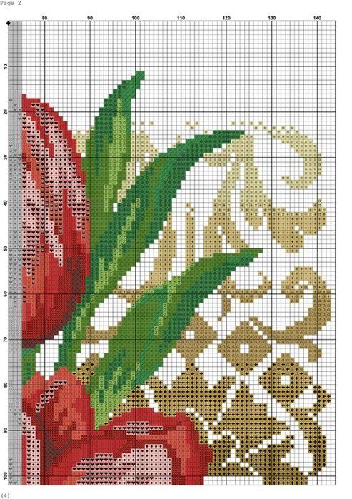 tulipany 3
