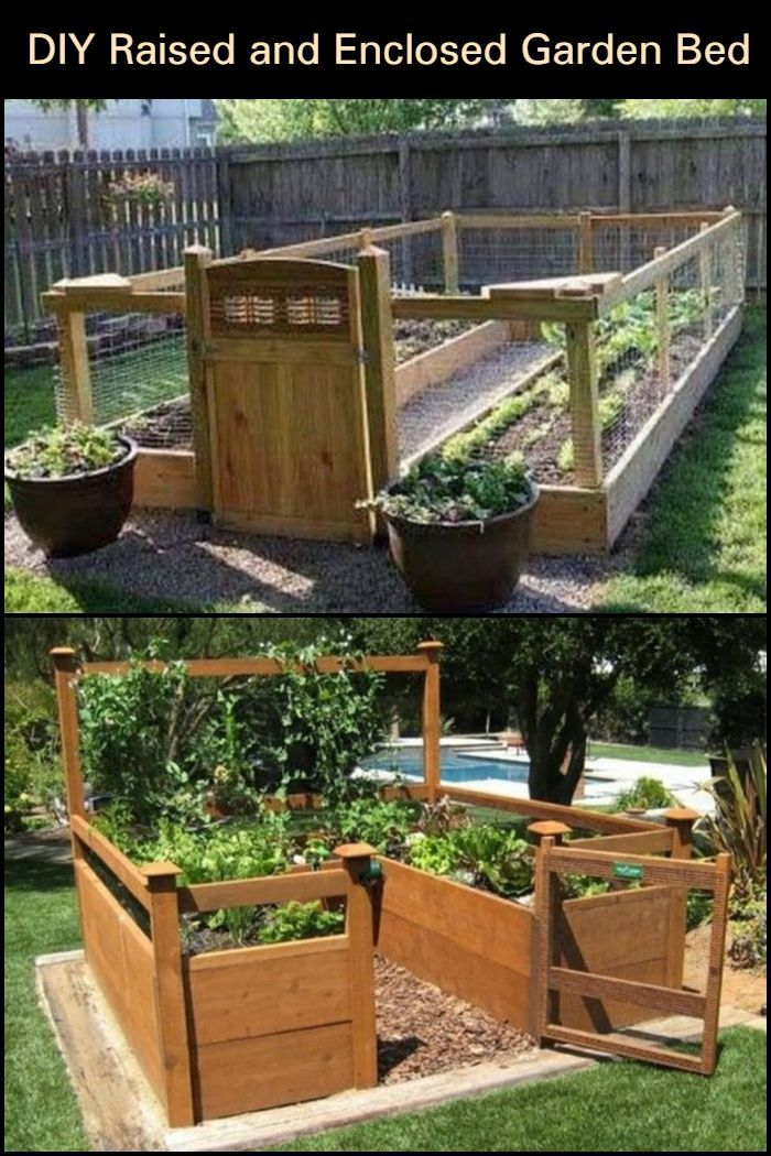 Diy Raised And Enclosed Garden Bed Vegetable Garden Raised Beds