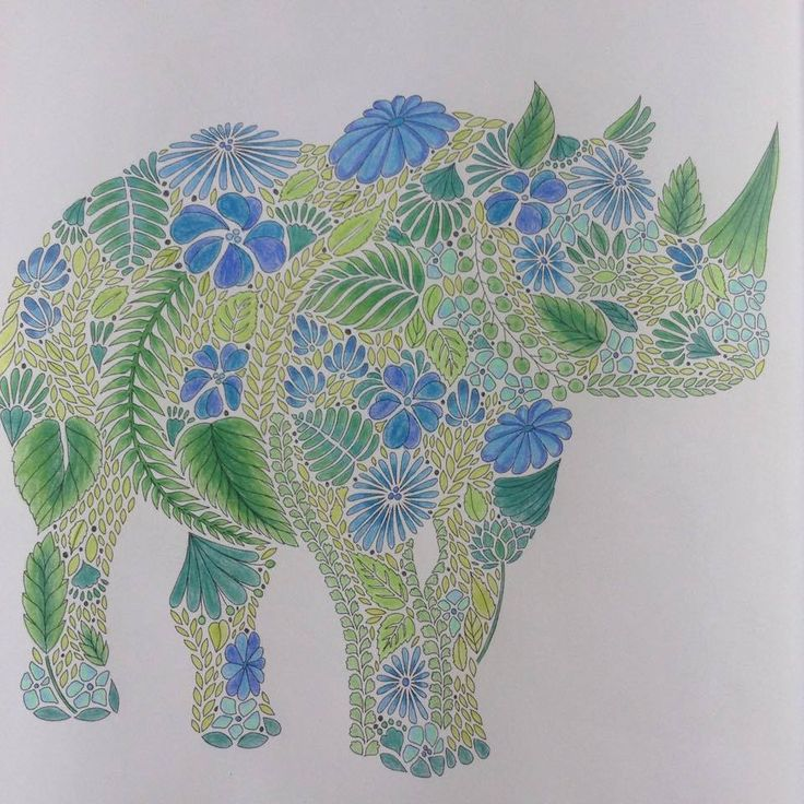 Millie Marotta Animal Kingdom Coloring BooksColouringAnimal
