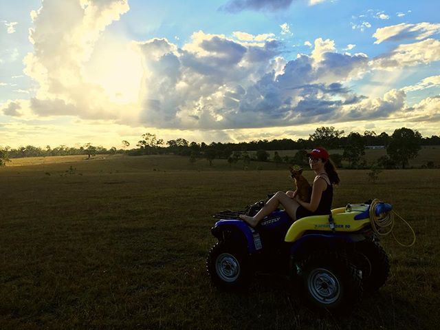 Take me back to the long weekends farm adventures. What did you get up to for Australia Day?