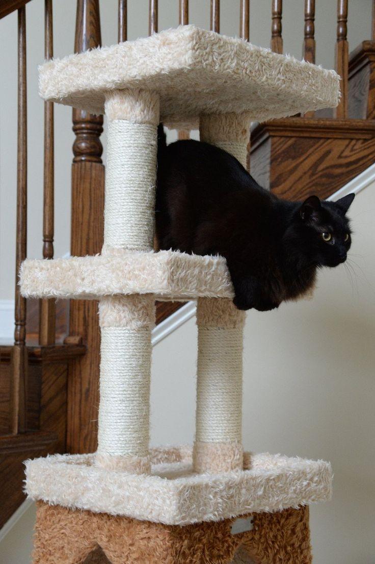 best designer cat trees images on pinterest  pet furniture  - amarkat premium cat tree (x large) – designer pet furniture  accessories