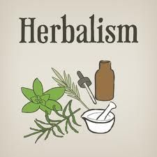 FREE ONLINE HERBALISM COURSE