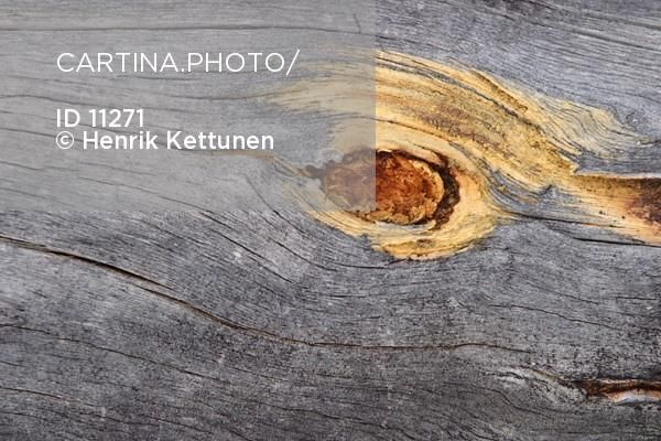 Kelo Clothesline Custom 45 Best Kelo Images On Pinterest  Alder Tree Ancient Scripts And Inspiration