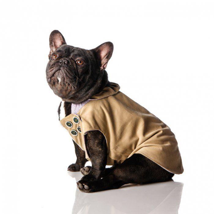 Confectionnez un manteau chic pour chien