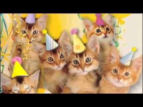 Cat Singing Happy Birthday - YouTube