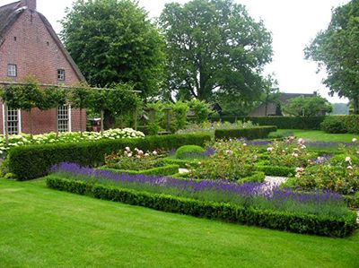 De Eshof tuin bloemen gras