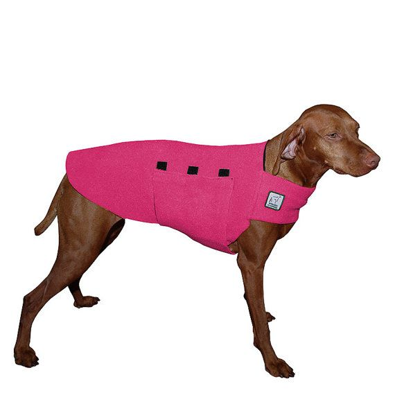 Please Note: If your dog is not a Vizsla or is a mixed breed, please contact us about making a custom coat for your dog.  Please provide the