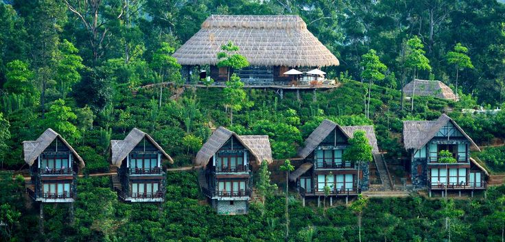 Exterior view of Chalets