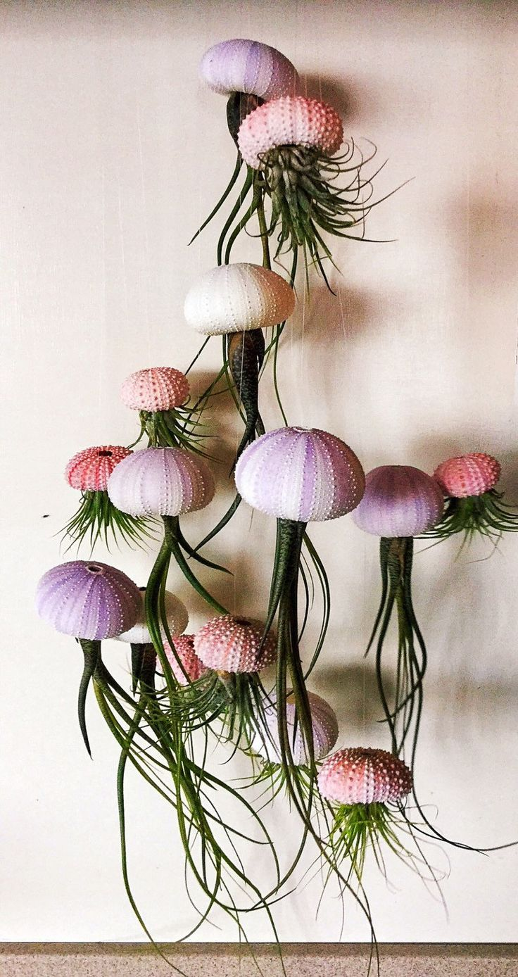 best flowers images by mairis sa on pinterest succulents