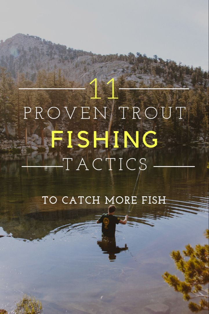 11 proven trout fishing tactics including trout fishing tips, trout