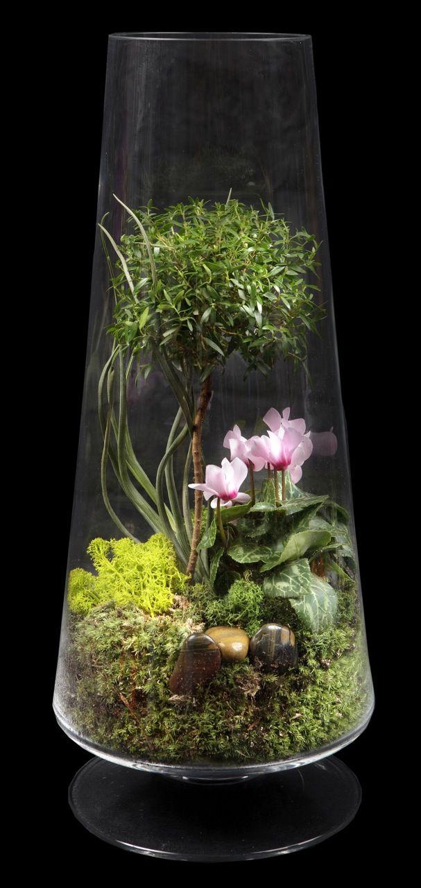 terrarium inspiration - chive.com