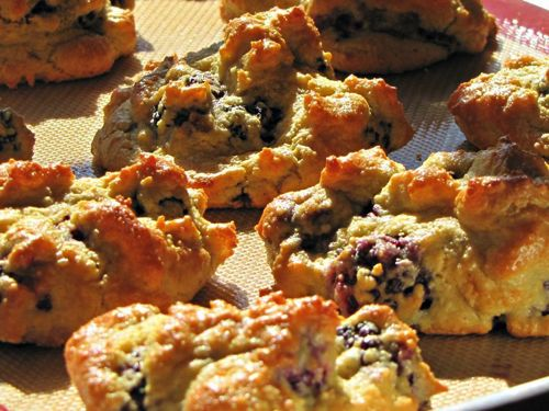 Blackberry Scones - This is actually George Stella's Raspberry Scones recipe made with blackberries. These scones are just superior, try them.
