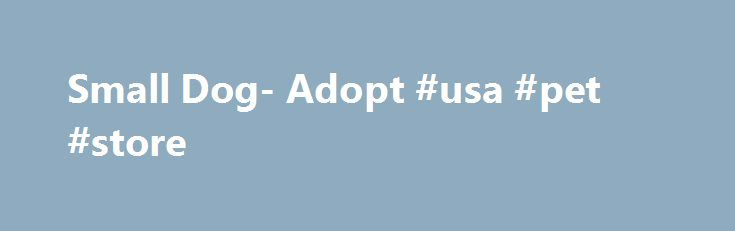 Small Dog- Adopt #usa #pet #store http://pet.remmont.com/small-dog-adopt-usa-pet-store/  Small Dog- Adopt If you are looking to adopt a small dog, then you ll be happy to know that there are small dog adoption groups everywhere. If you know what type of dog you want, you can visit your local shelter or check availability online. A very useful website about small dog adoptions is http://adopt-a-pet.1-800-save-a-pet.com/ and you are given the option to sign up for email alerts on small dogs…