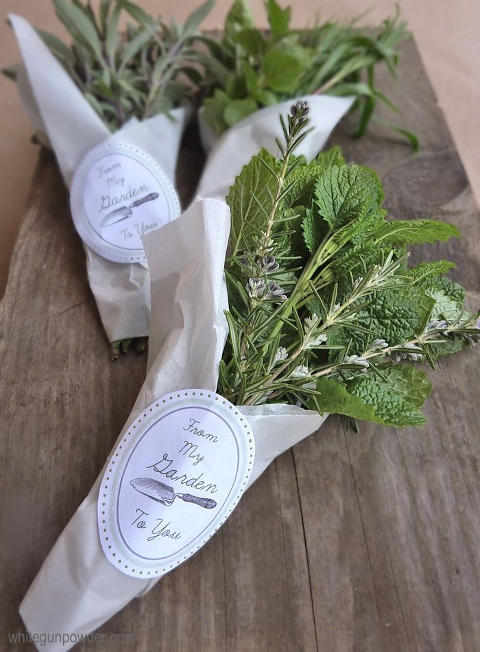 Gifting Fresh Herbs from the Garden » really fun party favor idea.