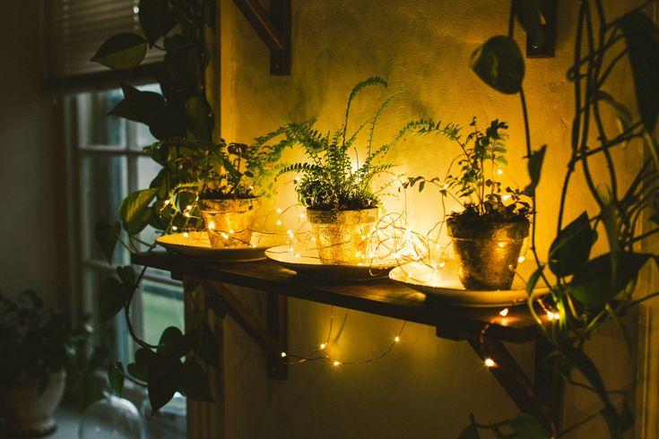 Fairy lights micro led light strings hometown evolution see more 1