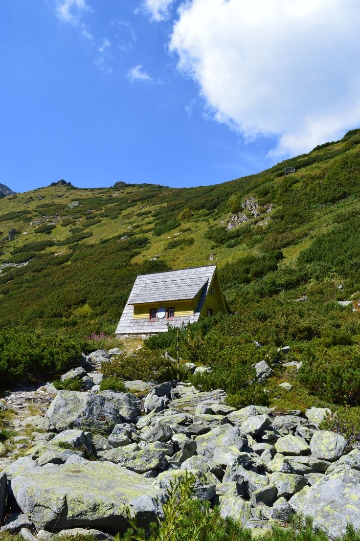 Summer of 2015 in Rodnei Mountains, Romania